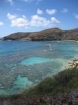 hawaii2010.jpg